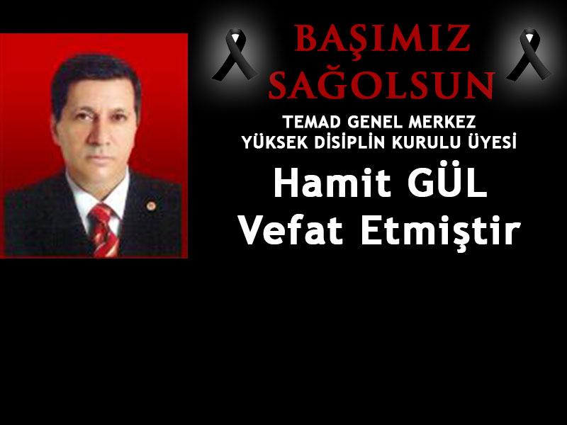 hamit_gul2